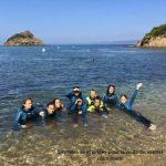 6-nageuses